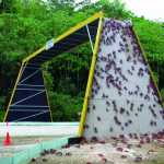 Jembatan Migrasi Kepiting Pulau Christmast Australia