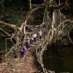 anak sekolah melewati jalan dari akar pohon