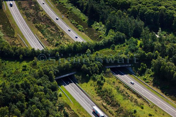 jembatan ramah lingkungan Ecoduct De Woeste Hoeve Belanda